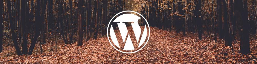 Wordpress with PoppyHost